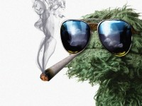 grouch weed smoker2